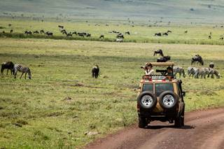 Ngorogoro Crater Day Excursion 3.jpg