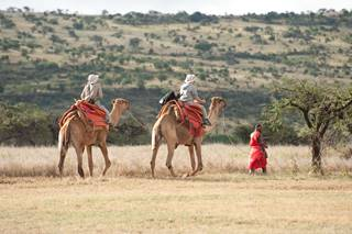 Camel ride at Lewa Wilderness.jpg