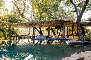 Singita Boulders Lodge - Main Pool.jpg