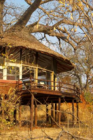 Tarangire Treetops - external view of treehouse 7.jpg