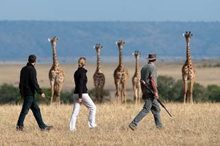 Game Walk Mara Plains.jpg