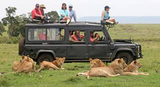 Riding Safaris Game drive with lions.jpg