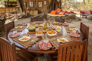 Remote-Africa-Safaris_Chikoko-Lunch.jpg