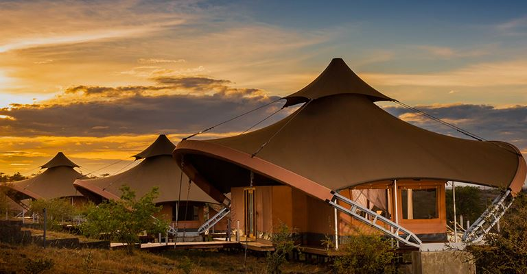 Atta Webinar: Virgin Limited Edition - Mahali Mzuri