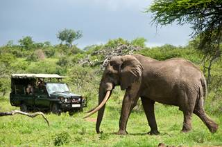 Game drive at ol Donyo Lodge.jpg