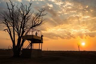 Shenton Safaris' Mwamba 8 - Numbu Star Bed Sunset.jpg