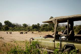 Elephants-game-drive.jpg