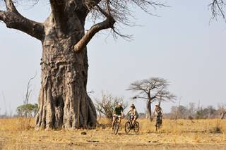 Tafika-cycling-activity_Remote-Africa-Safaris.jpg