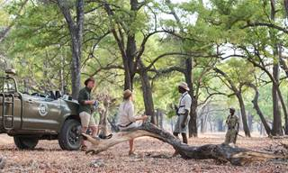 Shetnon Safaris' Game Drive 67 - Tea Break.jpg